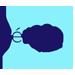 شركة بيرويا فارما لصناعة المستحضرات الدوائية والتجميلية-